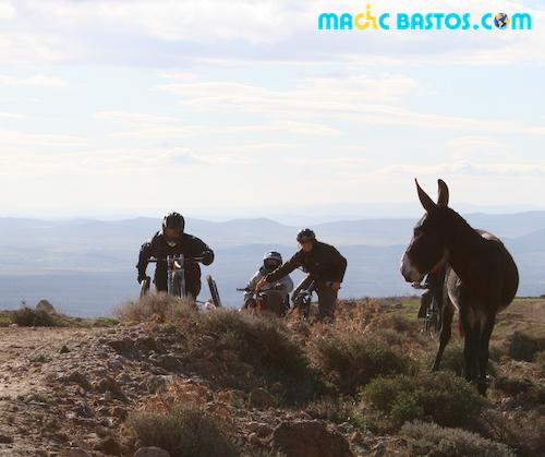 handisport-ftt-tunisie-magicbastos