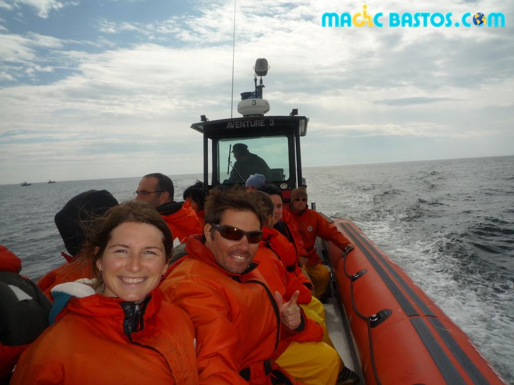 bateau-baleine-tadoussac
