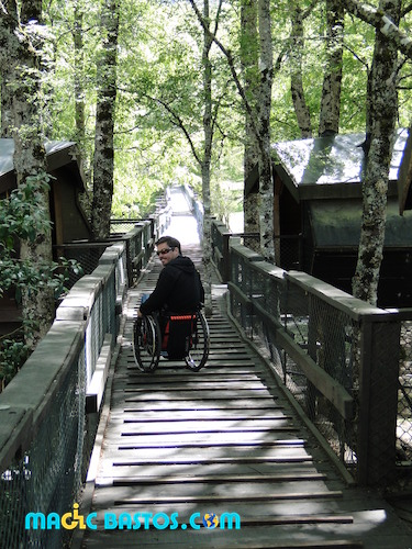 parc-naturel-chili-huilo-huilo