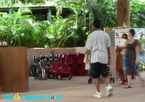 fauteuilroulant-parcoiseaux-singapour