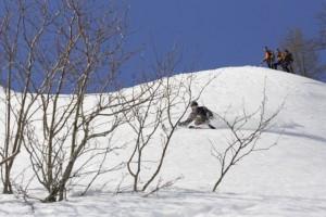ski-assis-freeski
