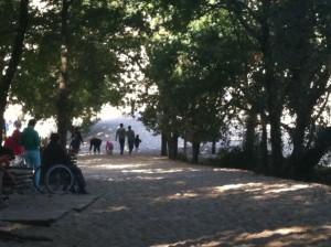 fauteuil-roulant-dune-pilat