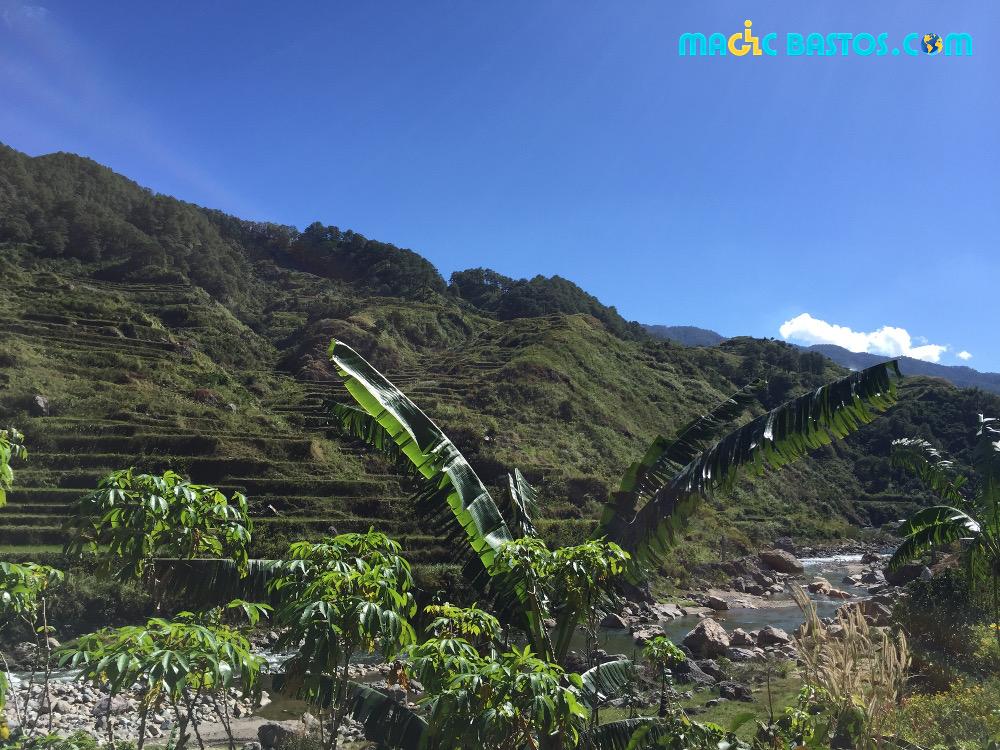 terrasses-rizières-philippines