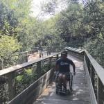 marais-dorx-fauteuil-roulant
